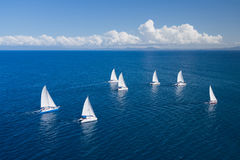 Regatta in indian ocean Royalty Free Stock Image