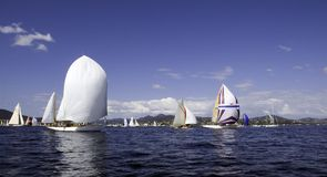 Regatta Nioularge. Regatta of traditional sailing yachts at voiles de St-Tropez Royalty Free Stock Photos