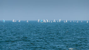 Regatta race Black Sea coast Royalty Free Stock Image