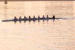 Regatta Rowing Girls Eights Stock Photography