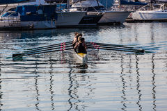 Regatta Rowing Girls Eights Harbor Stock Image