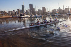Regatta Rowing Girls Fours  Royalty Free Stock Image