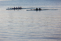 Regatta Rowing Canoes Water Royalty Free Stock Images