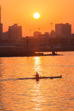 Regatta Rowing Skull Sunrise Colors. Rowing skull male rower silhouetted in  action on harbor waters at sunrise . Durban Rowing Club Head of the Bay Regatta on Royalty Free Stock Photography