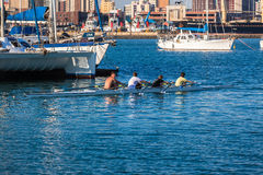 Regatta Rowing Yachts Harbor Stock Images