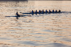 Regatta-Rudersport-Schädel Eights-Morgen-Hafen Stockbilder