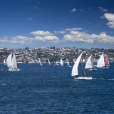 Regatta sail boats Stock Images