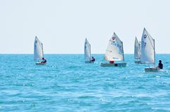 Regatta sailing Royalty Free Stock Photo