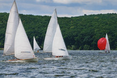 Regatta, sailing. Competition for marine sports Royalty Free Stock Photos