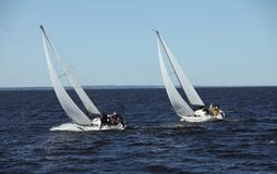 Free Regatta Sailing Yachts Stock Images - 135798904
