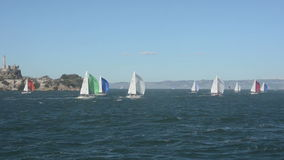 Regatta in San Francisco stock footage