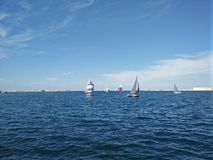 Regatta in Sevastopol Royalty Free Stock Photo