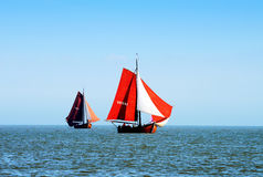 The regatta for traditional sailing ships Royalty Free Stock Image
