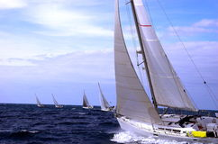 Regatta transquadra. Sailing boats in the start of the regatta Transquadra Royalty Free Stock Photos