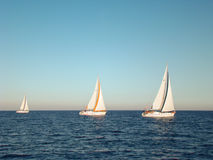 Regatta. Yacht race in open water in the sea Royalty Free Stock Photography
