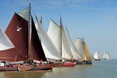 Regattan är ett lopp för traditionella seglingskepp Royaltyfri Bild