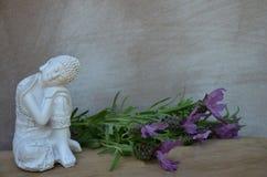 Regeling met Boedha en Lavendel royalty-vrije stock foto