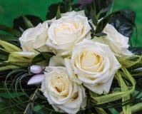 Regeling met witte rozen Stock Foto's