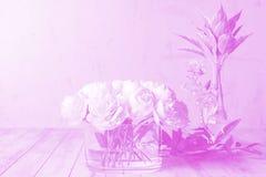 Regeling van bloemen die zich op oude houten raad in schotels bevinden royalty-vrije stock fotografie