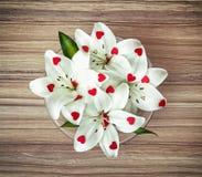Regeling van witte lelies met kleinere rode harten in g Royalty-vrije Stock Afbeeldingen