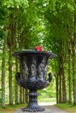 Regelmatig park (Les Jardins d'Annevoie) stock foto