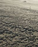 Regelmatige structuren van zandafwijkingen op een wind-swept strand stock foto
