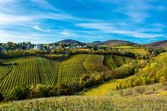 Regelung mit Häusern am Weinberg im Herbst Lizenzfreies Stockbild