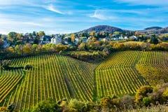 Regelung mit Häusern am Weinberg im Herbst Stockfotos