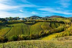 Regelung mit Häusern am Weinberg im Herbst Stockbild