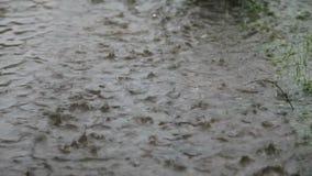 Regen stock footage