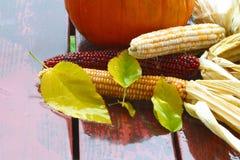 Regen 4344 van de herfst. Landbouw. november Stock Foto
