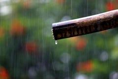 Regen Stock Foto