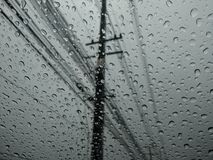 Regen Stockfotografie