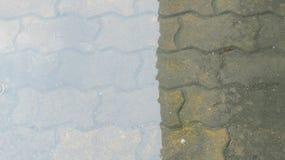 Regen lizenzfreies stockfoto