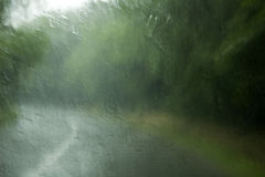 Regen auf Fenster Stockfotografie