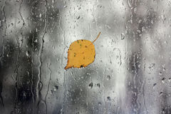 Regen auf Fenster mit Blatt Stockbilder