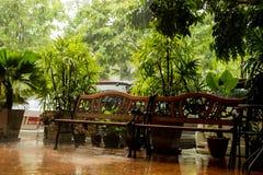 Regen dalende bomen en gangen stock foto