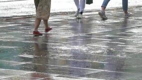 Regen in de stad in de zomer stock video