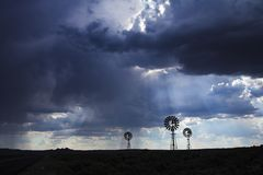 Regen in de woestijn Royalty-vrije Stock Afbeeldingen