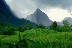 Regen in den Bergen Stockbilder
