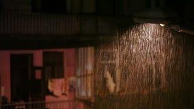 Regen in der Stadt nachts stock video