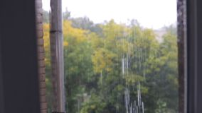 Regen, die Ansicht vom Fenster Nahtloses geschlungen stock video