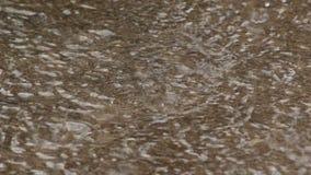 Regen die in de Vulklei vallen stock video