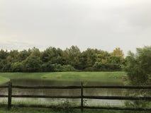Regen die in Maryland vallen stock afbeelding