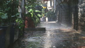 Regen die op installaties in lege straat in Mumbai vallen stock video