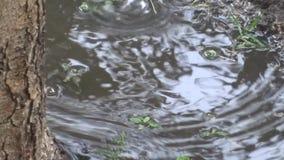 Regen en vulklei stock footage