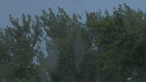 Regen en wind stock footage
