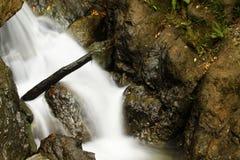 Regen Forest Waterfall Lizenzfreie Stockbilder