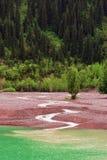 Regen. Grüner See. Stockfoto