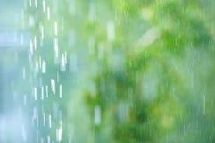 Regen in het bos, de natuurlijke achtergrond en de textuur Vaag abstract beeld Stock Foto